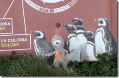 Olly and the penquins (almost!)