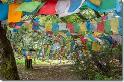 Colourful Buddhist prayer flags