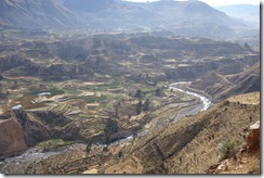 Colca Canyon but no Condors