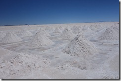Pyramids of salt drying in the sun