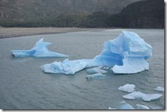 Icebergs in Lago Grey