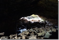 Inside a lava tube looking out