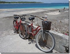 Our rusty bikes and Olly