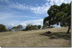 Ouen Toro park in the sunshine