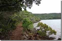 Path along the coast