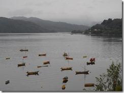 Rowing boats in Niebla harbour