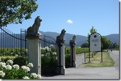 Allan Scott Winery - just opposite Cloudy Bay