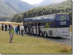 Gringo Tour