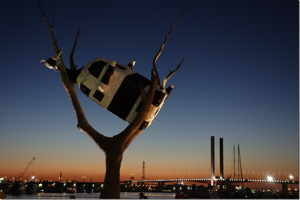 Cow in a tree at night
