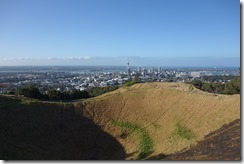 Looking out over the volcano crater at Eden Park