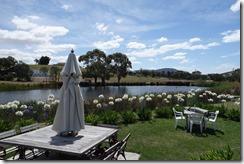 Puddleduck Winery garden