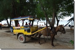 Transport in Gili Trawangan