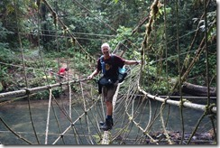 Crossing rope bridge