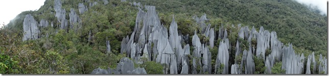 The Pinnacles in panorama