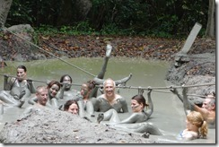 Wallowing in the mud