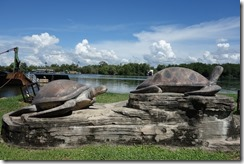 Big turtles doe not make up for not going to Turtle Island