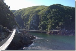 Suspension bridges along the coast and over Storms River