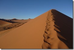 Probably the best sand dunes in the world