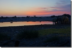 Thank you, Etosha. You have been a wonderful place to visit