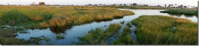 Narrow waterways in the Okavango Delta
