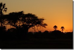 Dawn at Moremi Crossing - from the balcony of our tent