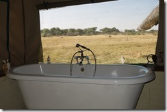 A bath with a view!