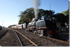Added bonus seeing the steam train