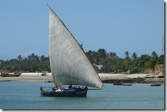 Sailing Dar style