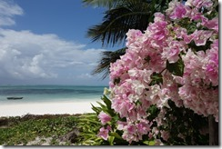 Picture postcard Zanzibar