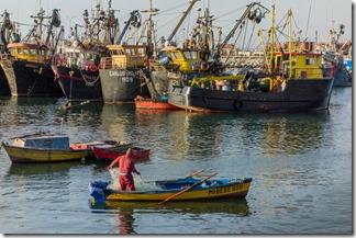 Fishing boats big and small