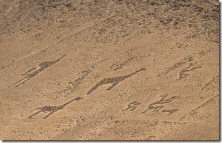Geoglyphs on the hillside