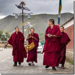 Young monks about their daily tasks