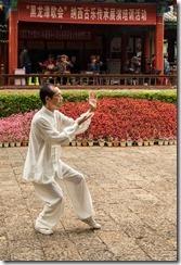 Tai Chi demonstration