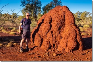 These termite hills are huge and red