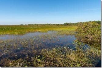 Mamaluk Wetlands